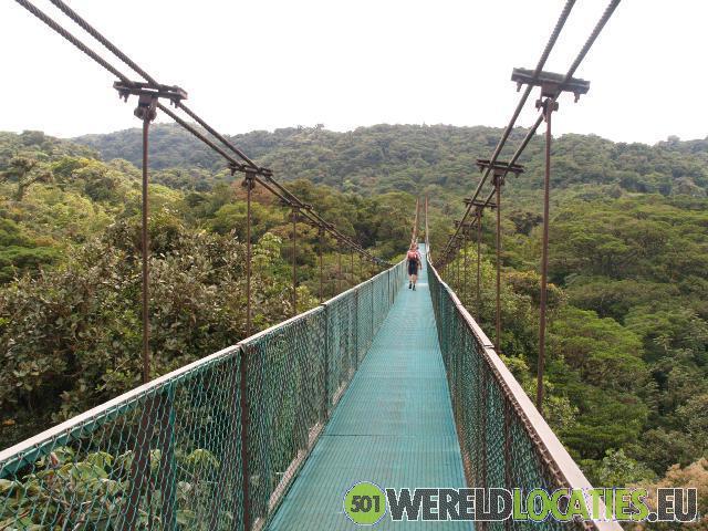 Het Nevelwoud van Monte Verde