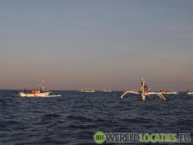 Indonesië - Dolfijnen bij Lovina