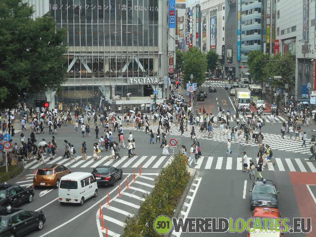 Japan - Ginza en Shibya district in Tokyo