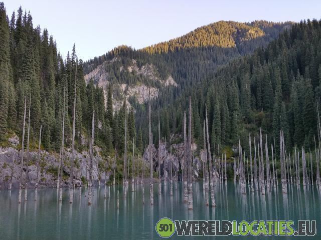 Kazachstan - Dode bomen in Lake Kaindy