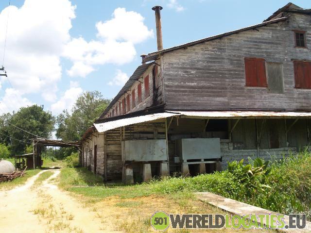 Suriname - De koffieplantage Peperpot