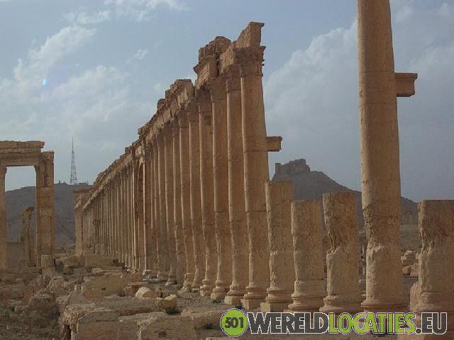 Palmyra de Stad van Duizend Zuilen